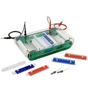 Product SCIE PLAS Horizontal electrophoresis