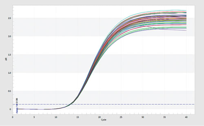 Data Kualitas Real Time PCR