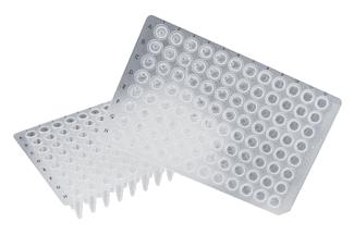 Sorenson PCR Plates - Indonesia