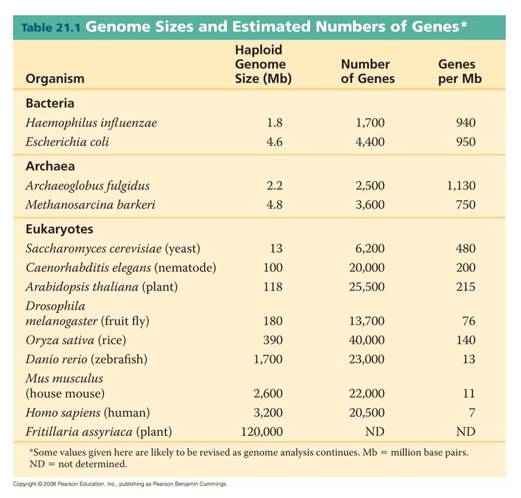whole genom sequencing