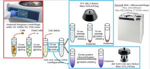 Skema Isolasi Exosome dengan ultra centrifuge